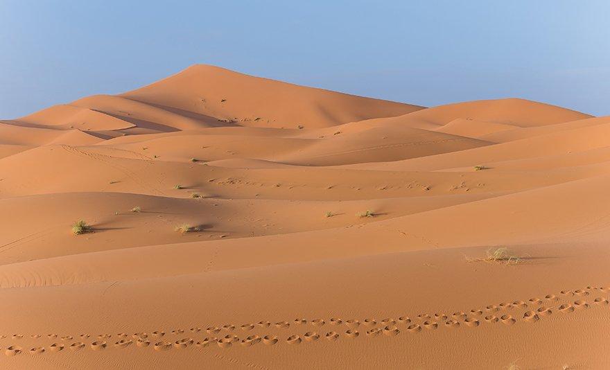 Meleg társkereső marrakech