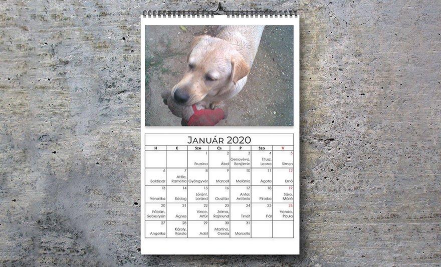 Ajándék egész évre: egyedi készítésű fényképes falinaptár vagy fényképes éves plakátnaptár